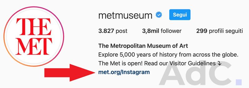 metmuseum bio Instagram